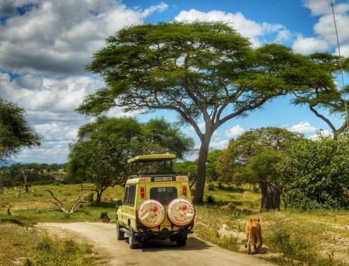 Tanzánie - Safari a Zanzibar
