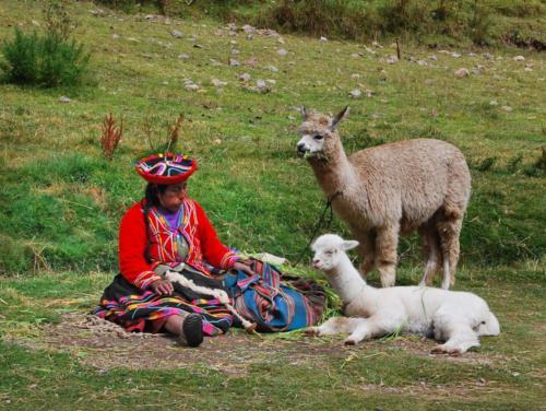 03 Peru