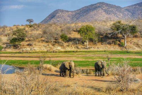 Tanzanie - nepoznané krásy jihu